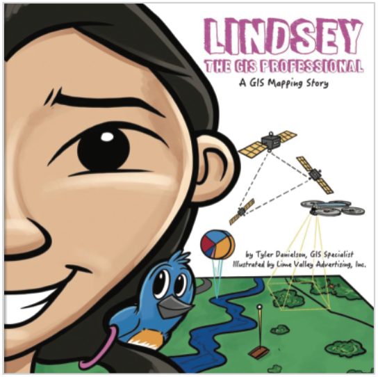 Lindsey the GIS professional book cover